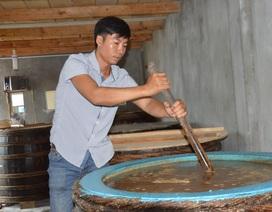 Quảng Ngãi:  Khởi nghiệp thành công bằng nghề làm nước mắm truyền thống