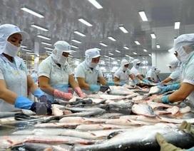 """Cá tra Việt Nam """"rộng cửa"""" tại Trung Quốc, sản phẩm lên """"sàn"""" Alibaba"""