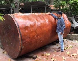 Bí ẩn khúc gỗ dài 3 mét, đại gia Hải Phòng trả giá gần 4 tỷ đồng