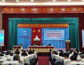 Công ty Cổ phần Đường Quảng Ngãi tổ chức Đại hội đồng Cổ đông thường niên 2019