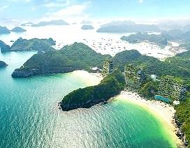 Công khai kết luận thanh tra tổ hợp nghỉ dưỡng Flamingo Cát Bà Beach Resort
