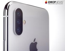 Thêm thông tin khẳng định iPhone 2019 sẽ có 3 camera, kích thước lớn hơn