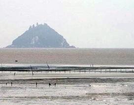Xuất hiện rết biển ăn ngao tại Thanh Hóa