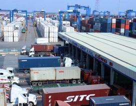 """""""Tung"""" khuyến mãi phí lưu bãi tại cảng để """"giải tỏa"""" hàng ngàn container phế liệu"""