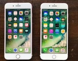 Dùng iPhone giả do Trung Quốc sản xuất để lừa Apple gần 1 triệu USD tiền bảo hành