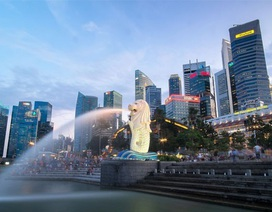"""Gặp cả """"rừng"""" quy định, Startup Việt phải sang Singapore làm """"giấy khai sinh"""""""