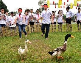 Trẻ nhỏ Hà Nội thích thú chơi bắt vịt, đập niêu tại Hoàng Thành Thăng Long