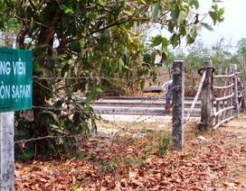 Hàng loạt sai phạm tại dự án công viên 500 triệu USD tại TP HCM!