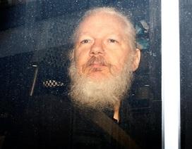 Phản ứng của thế giới về vụ bắt giữ ông chủ WikiLeaks