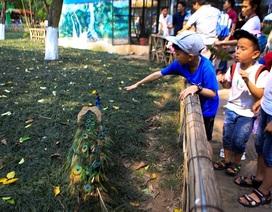 Vườn thú, công viên Hà Nội đông nghịt người trong ngày nghỉ lễ