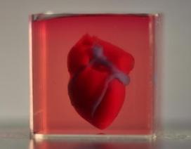 """""""In"""" quả tim 3D bằng mô của bệnh nhân"""