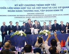 Agribank đồng hành cùng chuỗi sự kiện của Liên minh HTX Việt Nam tại TP. HCM