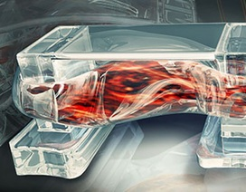 Các nhà khoa học vừa tạo ra một vật liệu sinh học hoàn toàn mới
