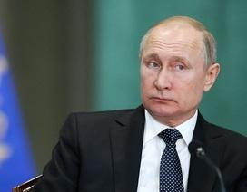 Động thái đầu tiên của ông Putin sau khi danh hài Ukraine đắc cử tổng thống