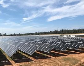 Quảng Ngãi:  Nhà máy điện mặt trời 900 tỷ đồng đi vào hoạt động