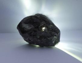 Đào được viên kim cương to hơn quả bóng tennis, lớn thứ 2 thế giới
