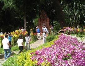 110.000 nghìn chậu hoa phủ kín công viên Tao Đàn
