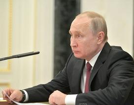 Phản ứng của ông Putin khi tổng thống đắc cử Ukraine tính cấp quốc tịch cho người Nga