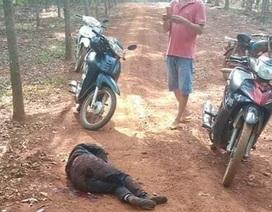 Chồng chặn đường đâm gục vợ cũ giữa rừng cao su