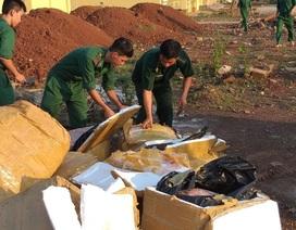 Tiêu hủy hơn 1 tấn thịt gia cầm nhập lậu ở khu vực biên giới