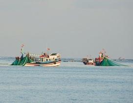 Xử lý nghiêm các tàu cá khai thác hải sản bất hợp pháp