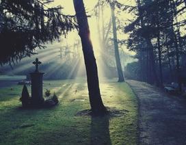 10 bài hát hay nhất dành cho sự chia ly sau cuối của cuộc đời