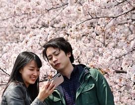 """Giới trẻ Nhật Bản: Không hôn nhân, không tình dục và """"khủng hoảng còn trinh"""""""