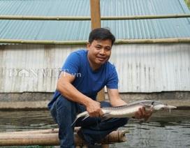 """Trai Hà thành bỏ nghề giáo viên, """"bén duyên"""" với cá...""""tên lửa"""""""