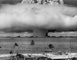 Ruột của sinh vật biển sâu chứa cacbon phóng xạ từ bom nguyên tử