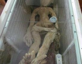 Sự thật xác người ngoài hành tinh gây rúng động ở Trung Quốc