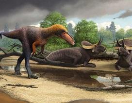 Phát hiện họ hàng của khủng long bạo chúa chỉ cao chưa đến… 1m