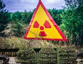 Phát hiện những điểm nóng phóng xạ mới ở Chernobyl