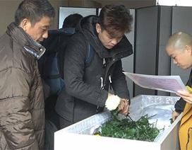 Góc khuất phía sau cuộc sống chông gai của thực tập sinh Việt tại Nhật Bản