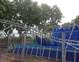 Mái che bể bơi cho học sinh bị đổ sập dù mới được khắc phục