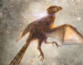 Loài khủng long tí hon với đôi cánh giống như loài dơi hiện đại