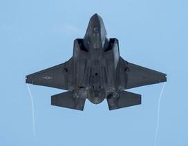 Bí ẩn bao trùm vụ tai nạn máy bay chiến đấu F-35 của Nhật Bản