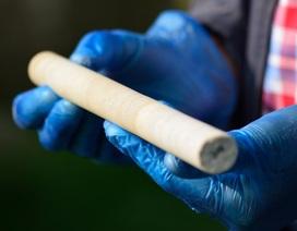 Lõi đá của kỳ quan Stonehenge bất ngờ được trả lại sau 60 năm mất tích