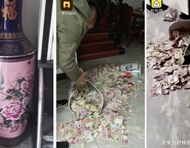 Con gái làm vỡ bình hoa, vợ vô tình phát hiện ra bí mật của chồng sau 13 năm!
