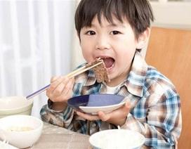 5 nguyên tắc vàng của mẹ Nhật giúp con hết biếng ăn