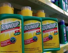 Monsanto bị yêu cầu bồi thường 2 tỷ USD cho cặp đôi ung thư