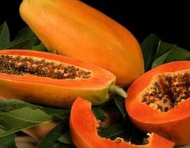 Công dụng làm đẹp và bảo vệ sức khỏe tuyệt vời từ trái đu đủ