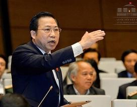 """Ông chủ Nhật Cường bỏ trốn: Đại biểu nói có cơ sở nghi ngờ """"không phải ngẫu nhiên"""""""