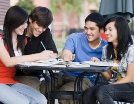Công bố danh sách đơn vị được tổ chức thi và cấp chứng chỉ ngoại ngữ, tin học