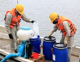 Chủ tịch Hà Nội yêu cầu thanh tra việc mua chế phẩm làm sạch ao hồ