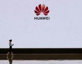 """Trung Quốc chỉ trích Mỹ khi """"liệt"""" 5 hãng công nghệ nước này vào """"danh sách đen"""""""