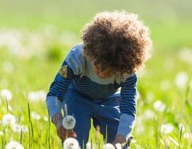 Những người lớn lên trong môi trường thiên nhiên có sức khỏe tâm thần tốt hơn?