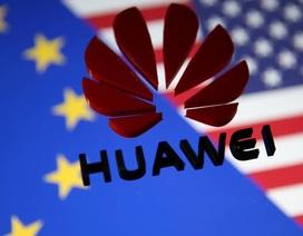 Doanh số Huawei tăng 130% tại Trung Quốc sau khi Mỹ ban hành lệnh cấm