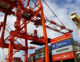 Vinalines chi 404 tỷ đồng để thu hồi Cảng Quy Nhơn về cho nhà nước