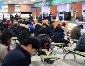 Hàn Quốc bắt nhóm người Việt làm giả giấy phép lái xe