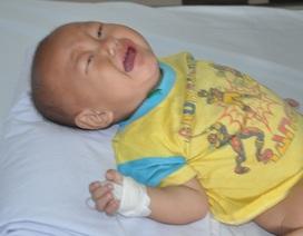 Tiếng khóc xé lòng của cậu bé 13 tháng tuổi nhiều lần bố mẹ muốn xin em về chờ chết!